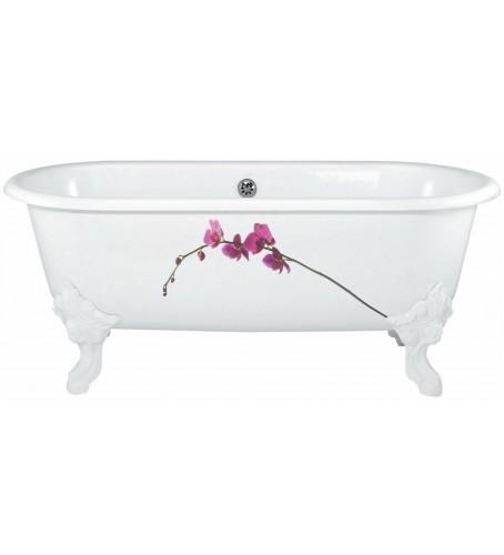 Ванна  CLEO/170x80/ (Окраш)